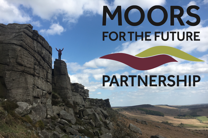 Moors For The Future
